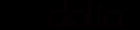 DALIA  – Auf dem Weg vom Prototyp zum Markteintritt